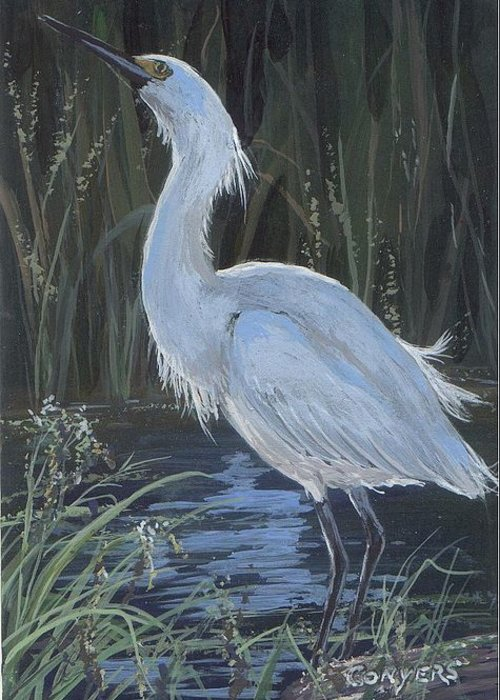 Egret Greeting Card featuring the painting Egret by Peggy Conyers