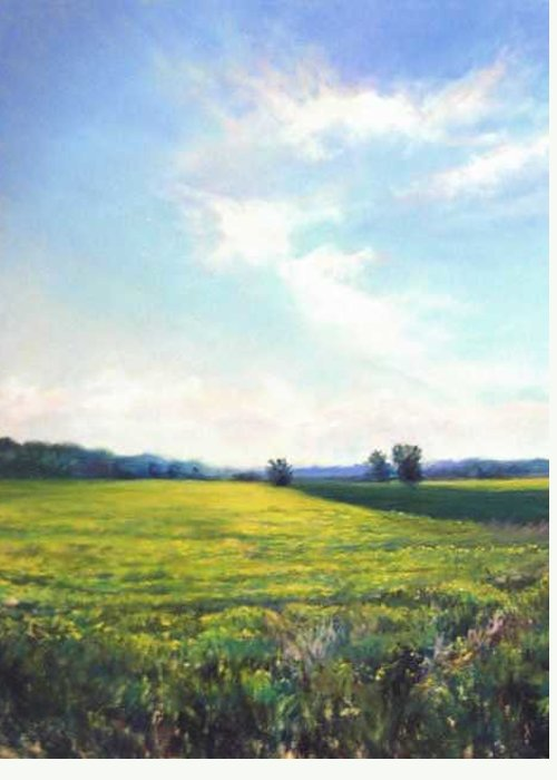 Original Work For Sale Greeting Card featuring the painting Field Of Yellow by Cathy Boyd