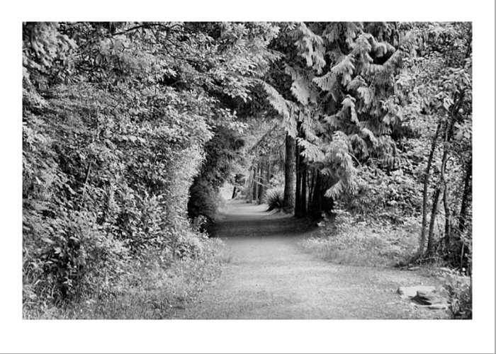 Tunnel Greeting Card featuring the photograph Forest Tunnel by J D Banks