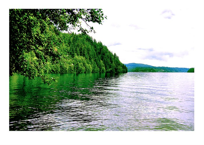 Lake Greeting Card featuring the photograph Green Lake by J D Banks