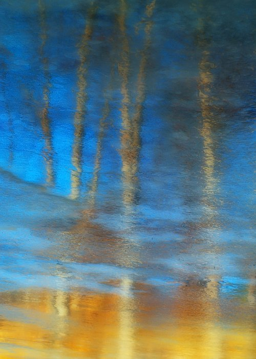 Ice Greeting Card featuring the photograph Ice Reflections by Tara Turner