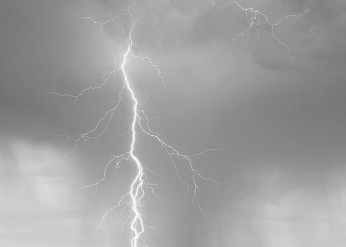 July Greeting Card featuring the photograph Lightning Strike Colorado Rocky Mountain Foothills Bw by James BO Insogna