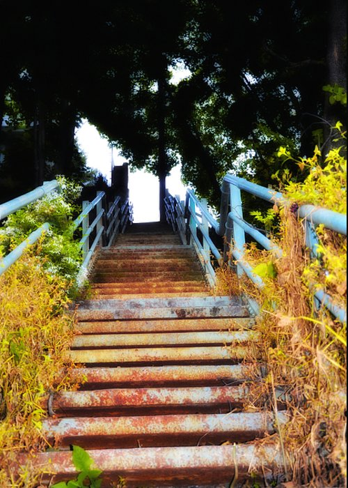 Manayunk Greeting Card featuring the photograph Manayunk Steps by Bill Cannon