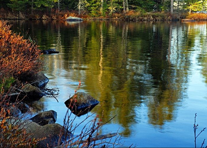 Chad Lake Greeting Card featuring the photograph Morning Reflections On Chad Lake by Larry Ricker