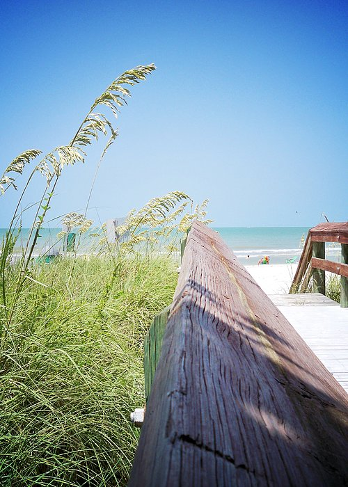 Florida Greeting Card featuring the photograph Path To Relaxation Vanilla Pop by Chris Andruskiewicz