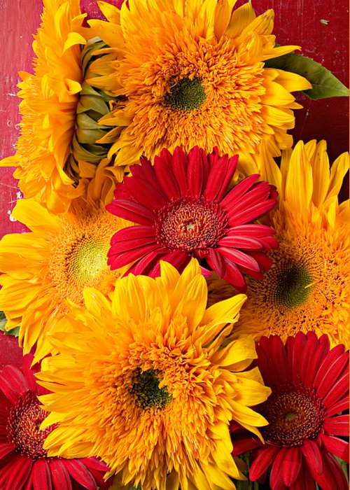 Sunflower Greeting Card featuring the photograph Sunflowers And Red Mums by Garry Gay