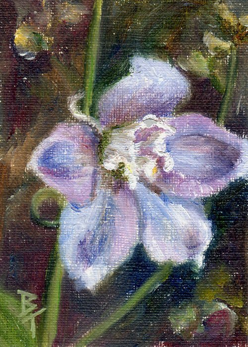 Flower Greeting Card featuring the painting Sweet Bloom Aceo by Brenda Thour