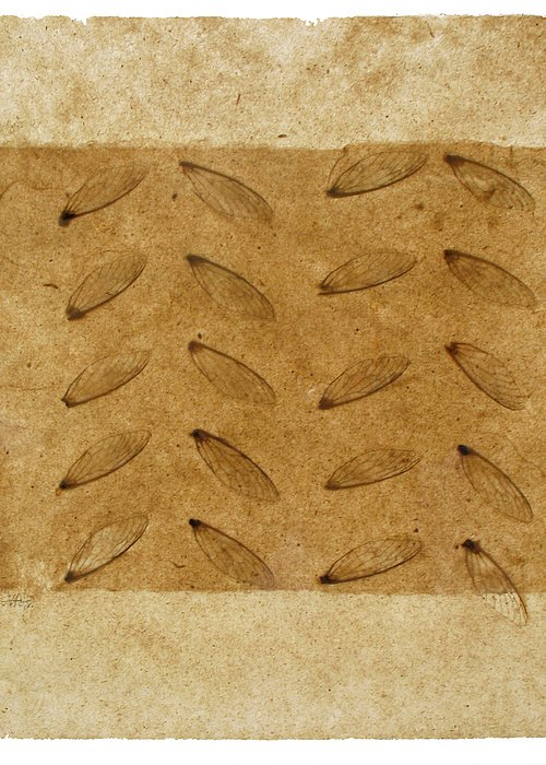 Artist Made Paper Greeting Card featuring the tapestry - textile Twenty Wings by Annie Alexander