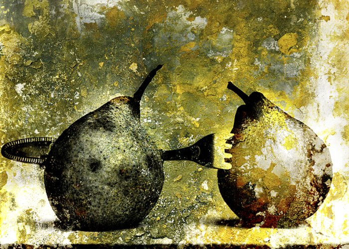 Aging Process Greeting Card featuring the photograph Two Pears Pierced By A Fork. by Bernard Jaubert
