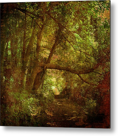 Forest Metal Print featuring the photograph In A Forest by Inesa Kayuta