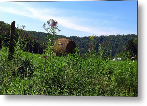 Adaline Metal Print featuring the photograph Lone Hay Round by Willy Nelson