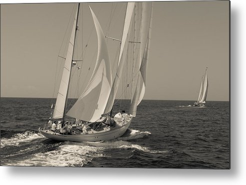 Metal Print featuring the photograph Runner Up by Fulco Tuynman