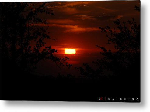 Landscape Metal Print featuring the photograph Watching by Jonathan Ellis Keys