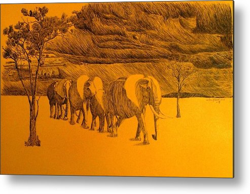 Africa Metal Print featuring the drawing Elephant Walk by Dan Hausel