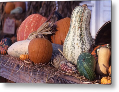 Metal Print featuring the photograph Fall-roadside-produce by Curtis J Neeley Jr
