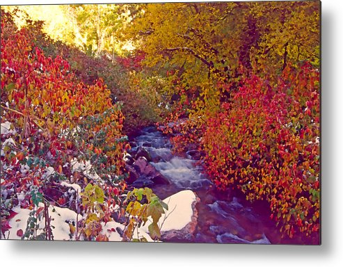 Stream Metal Print featuring the photograph Stream In Autumn by Steve Ohlsen