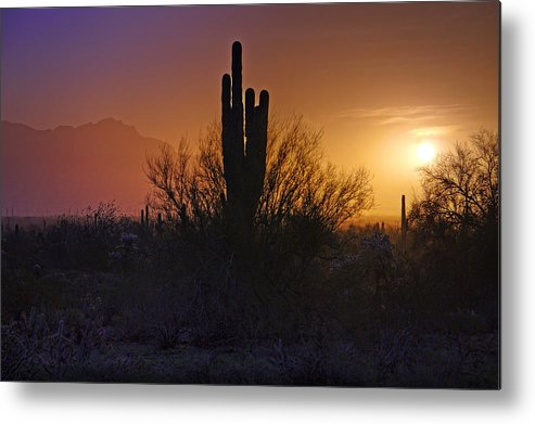 Sunrise Metal Print featuring the photograph A Sonoran Morning by Saija Lehtonen