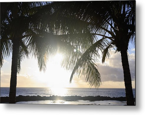Background Metal Print featuring the photograph Sharks Cove Sunset by Brandon Tabiolo