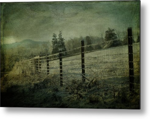 Snow Metal Print featuring the photograph The Morning After by Kathy Jennings