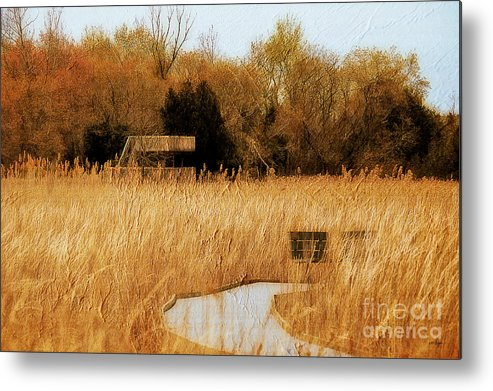 Marsh Metal Print featuring the photograph The Overlook by Lois Bryan