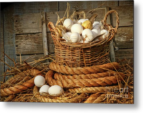 Agriculture Metal Print featuring the photograph Basket Of Eggs On Straw by Sandra Cunningham