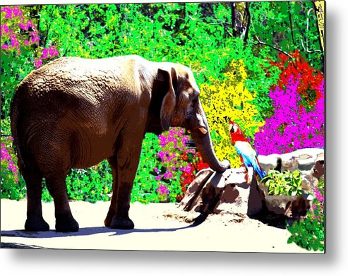 Elephant Metal Print featuring the photograph Elephant-parrot Dialogue by Rom Galicia