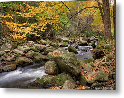 Great Smoky Mountains Metal Print featuring the photograph Little River I by Charles Warren