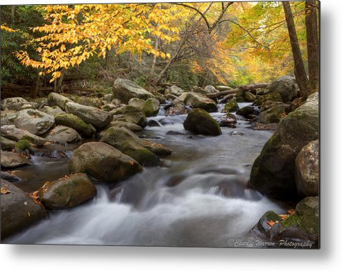 Little River Metal Print featuring the photograph Mid Stream by Charles Warren