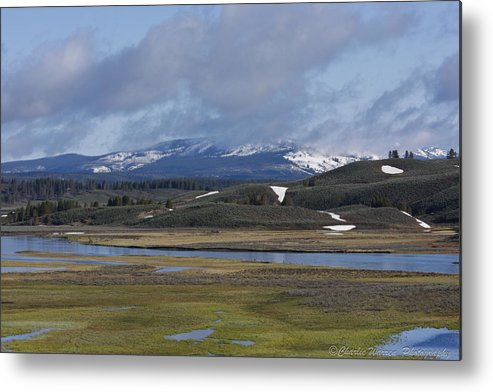 Yellowstone Metal Print featuring the photograph Yellowstone Vista 10 by Charles Warren