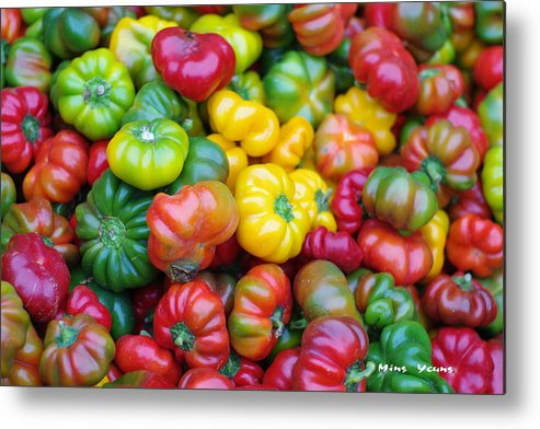 Bell Peppers Metal Print featuring the photograph Beauty Contest by Ming Yeung