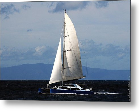 Australia Metal Print featuring the photograph Australia Gbr 2484 by PhotohogDesigns