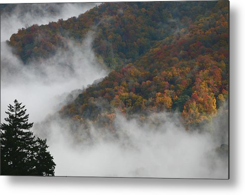 Scenery Metal Print featuring the photograph Autumn In The Mountains by James Jones