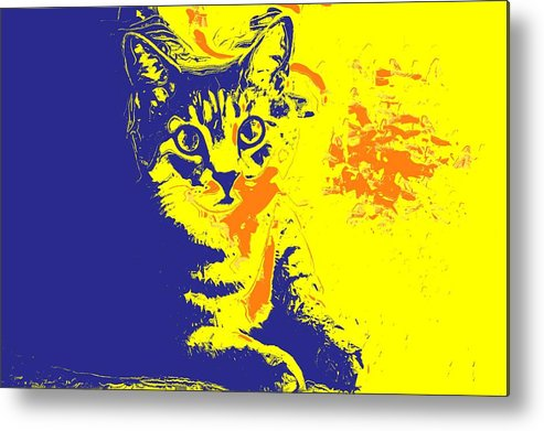 Cat Metal Print featuring the photograph Blue Bink by Donna Bentley