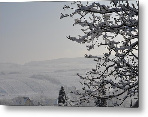 Calm Metal Print featuring the photograph Calm In Winter by Leonard Voicu