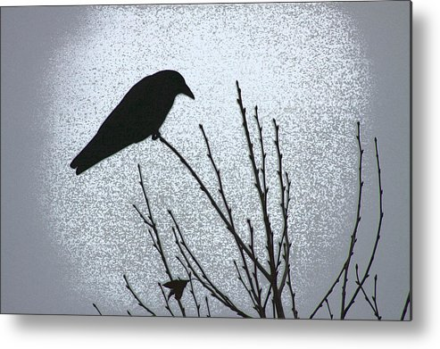 Crow Metal Print featuring the photograph Crow And The Moon by Lauren Rademacher