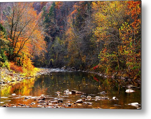 Autumn Metal Print featuring the photograph Fall Color Elk River by Thomas R Fletcher