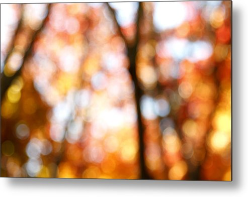 Abstract Metal Print featuring the photograph Fall Colors by Les Cunliffe