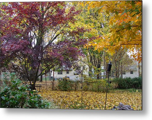 Fall Metal Print featuring the photograph Fall Day by Gregory Smith