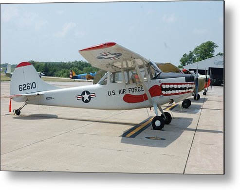 Dog Metal Print featuring the photograph Flight Line by Jame Hayes