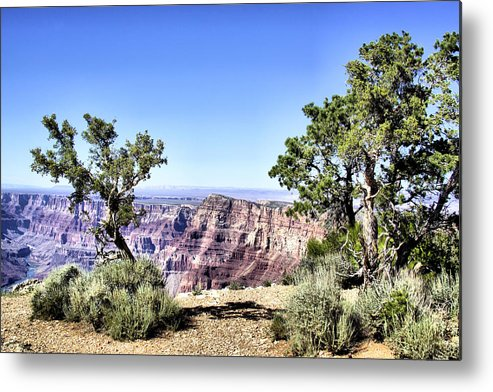 Grand Canyon Metal Print featuring the photograph Grand Canyon 2270 by Sharon Broucek