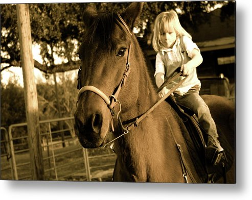 Horse Metal Print featuring the photograph Hard Work by Sherry Klander
