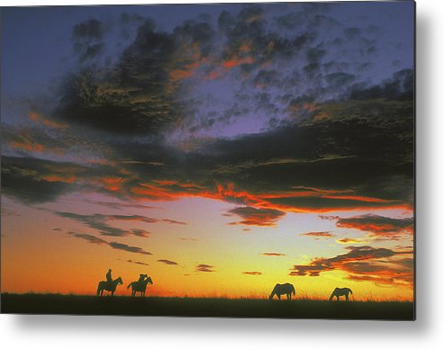 Cowboys Metal Print featuring the photograph Home On The Range by Carl Purcell