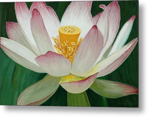 Flower Metal Print featuring the painting Lotus Of Awakening by Allan OMarra