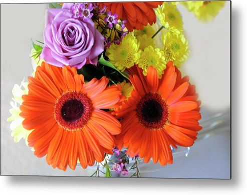 Digital Metal Print featuring the photograph Love Expressions by Vijay Sharon Govender