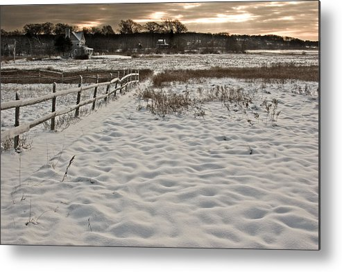 Landscape Metal Print featuring the photograph Marshland Cape Elizabeth Maine by Filipe N Marques