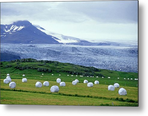 Agricultural Metal Print featuring the photograph Meadow With Hay Bales And Glaciers Near Jokulsarlon Lagoon In Iceland by Sami Sarkis