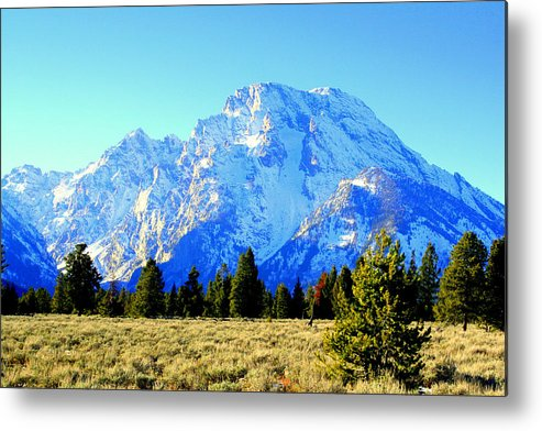 Mountains Metal Print featuring the photograph Mount Moran by Lynn Bawden