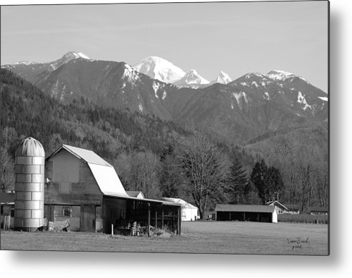 Black Metal Print featuring the photograph Mt. Baker Wine Country by J D Banks