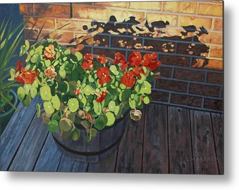 Flowers Metal Print featuring the painting Nasturtiums In Late Light by Allan OMarra