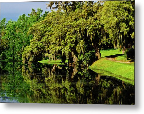 Middleton Place Metal Print featuring the photograph Peace Along The River by Louis Dallara